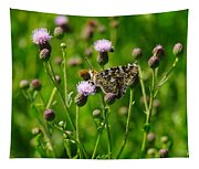 A Painted Lady Tapestry