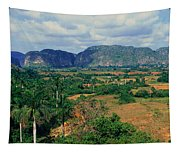 A Panoramic View Of The Valle De Tapestry