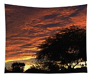 A Phoenix Sunset Tapestry
