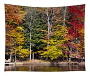 A Place To Relax In The Adirondacks Tapestry