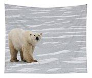 A Polar Bear On Hudson Bay Tapestry