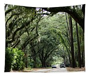 A Pretty Tree Covered Road Somewhere On Hilton Head Island Tapestry