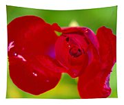 A Red Wet Rose Tapestry