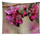 A Sign Of Spring Tapestry