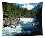 A Slice Of Montana Tapestry