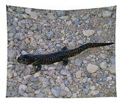 A Slow Salamander  Tapestry
