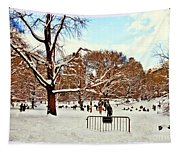 A Snow Day In Central Park Tapestry
