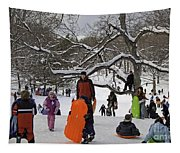 A Snow Day In The Park Tapestry