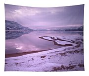 A Snowy Shore Tapestry