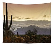 A Sonoran Morning  Tapestry