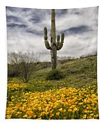 A Southwestern Style Spring Tapestry