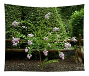 A Starburst Of Pink Tapestry