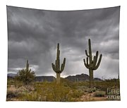 A Storm In The Sonoran Desert Tapestry