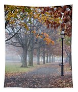 A Stroll In Salem Fog Tapestry