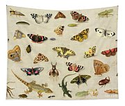 A Study Of Insects Tapestry