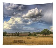 A Summers Evening Farm Tapestry