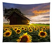 A Sunflower Moment Tapestry