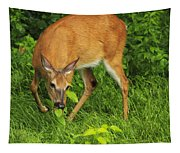A Taste Of Nature Tapestry