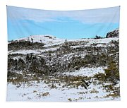 A Touch Of Blue Panorama Tapestry
