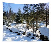 A Touch Of Snow Tapestry