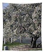 A Tree In Arlington Tapestry