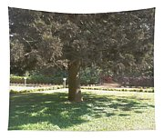 A Tree Tapestry
