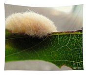 A Tribble On The Edge Tapestry