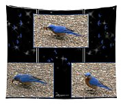 A Typical Eastern Bluebird's Lunch - Featured In Comfortable Art Group Tapestry
