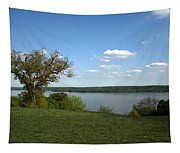A View From Mount Vernon Tapestry
