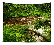 A View Of Eagle Creek Tapestry