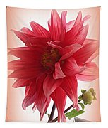 A Vision In  Coral - Dahlia Tapestry