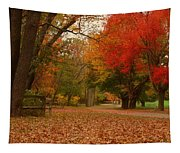 A Walk In Autumn - Holmdel Park Tapestry