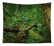 A Walk In The Woods Tapestry