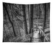 A Walk Through The Woods Tapestry