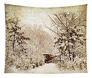 A Winter's Path Tapestry