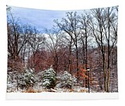 A Winters Scene Tapestry