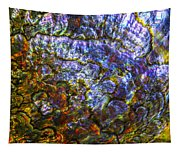 Abalone Shell 3 Tapestry