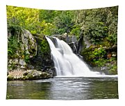 Abrams Falls Tapestry