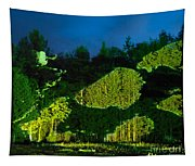 Abstract Art Projection Over Night Nature Scenery Tapestry