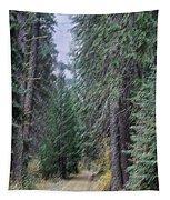 Abstract Road In The Wilderness Tapestry