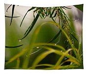 Acacia Water Drops Tapestry