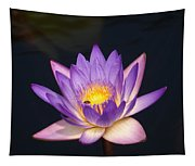 Accents On A Purple Waterlily... Tapestry
