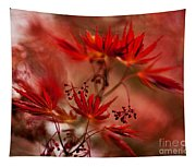 Acer Storm Tapestry