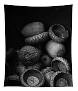 Acorns Black And White Tapestry