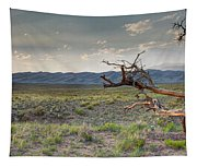 Across A Great Wilderness Tapestry