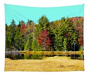 Adirondack Color Iv Tapestry