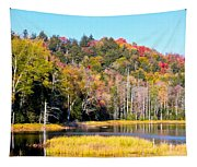 Adirondack Color V Tapestry
