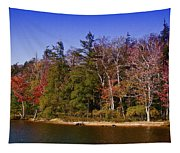 Adirondack Color Xi Tapestry