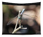 Adorable Dragonfly With Border Tapestry