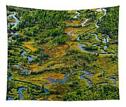 Aerial Of A Wetland, Over Northern Tapestry